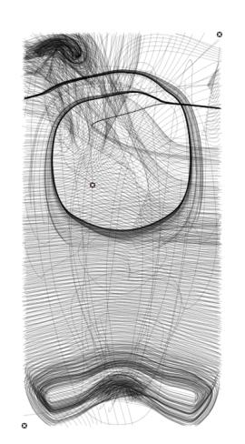 05-tensor-field-streamlines.jpg